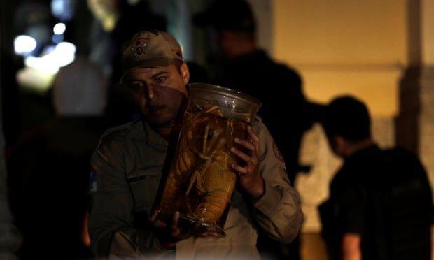 دایناسور کرمانی هم در آتش موزه برزیل سوخت؟