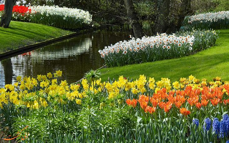 نکاتی جالب و هیجان انگیز درباره آغاز فصل بهار