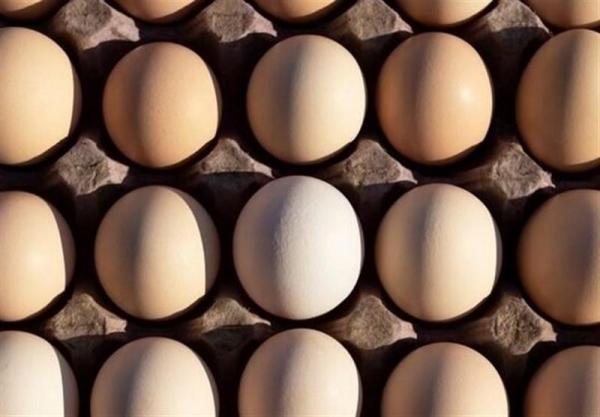 قول هایی که تو زرد از آب درآمد، تخم مرغ به شانه ای 48 هزار تومان پرکشید!