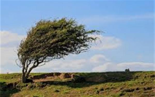وزش باد شدید تا خیلی شدید در 24 استان