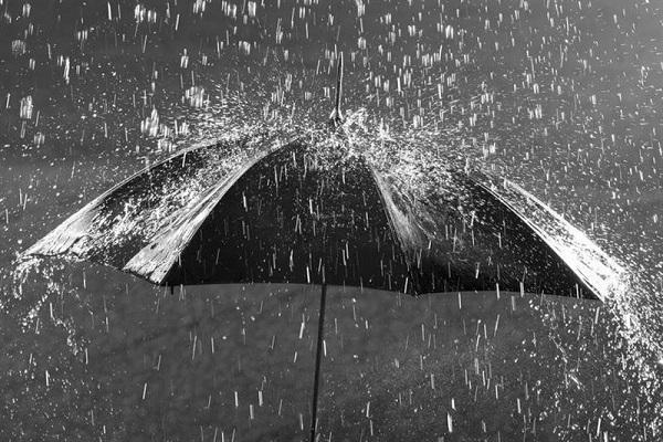 بارش برف و باران در برخی مناطق تا چهارشنبه، پیش بینی کاهش 12 درجه ای دما