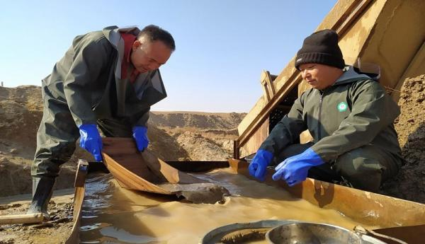 فعالیت چینی ها در معادن طلای ایران